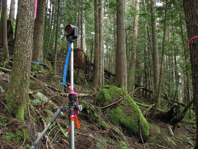 land surveying   land surveyor
